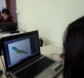 colorazione-digitale-degli-animali